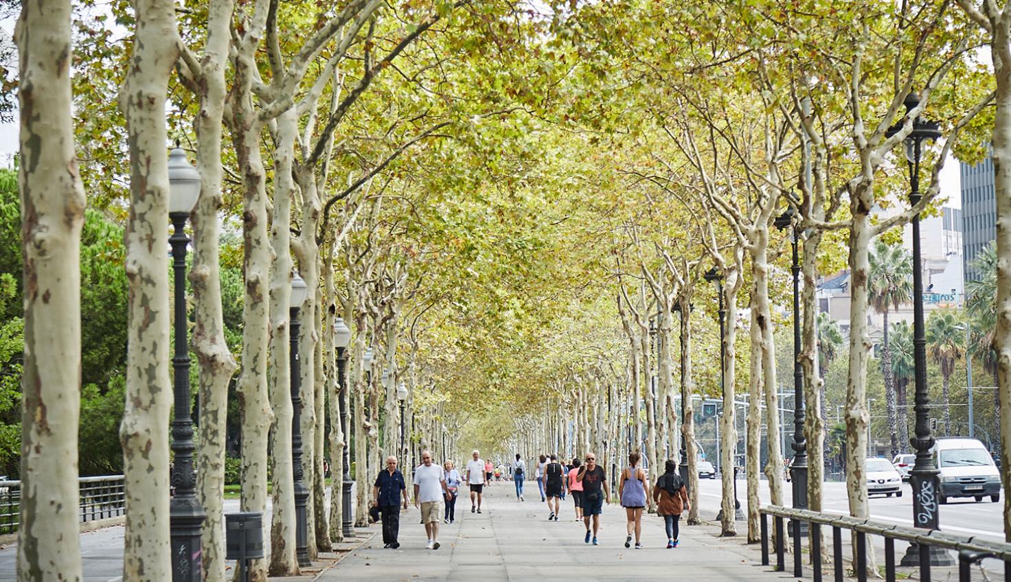 Photo Diagonal Barcelona
