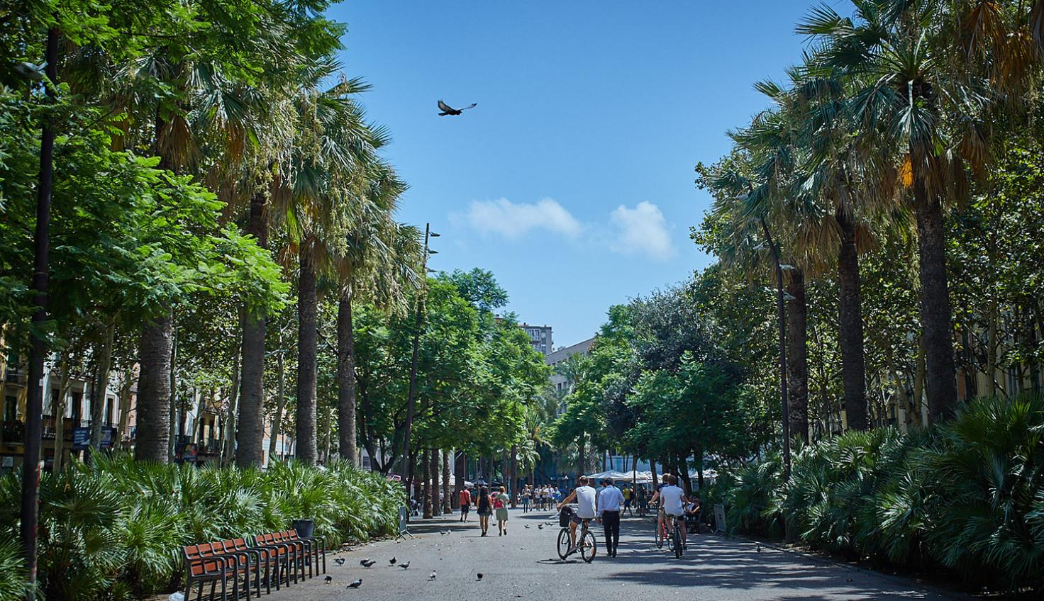 Foto Quartiere Raval Barcellona