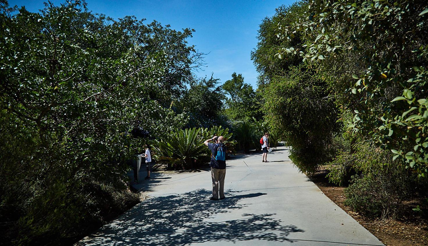 Foto Giardino Botanico Monjuïc