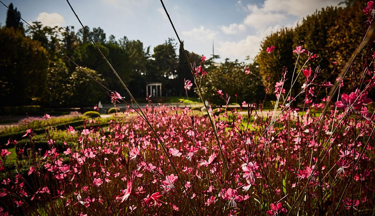 Foto Jardins de Joan Maragall