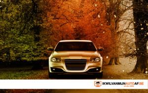 Autorijden in de herfst
