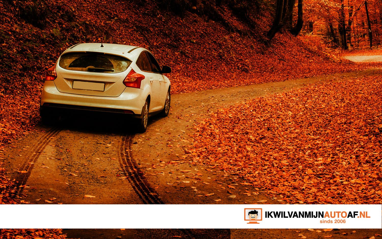 Auto in herfstbladeren