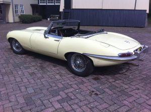 Oude Jaguars voor het grote publiek
