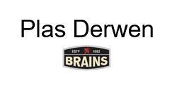 Logo of Plas Derwen - Brains