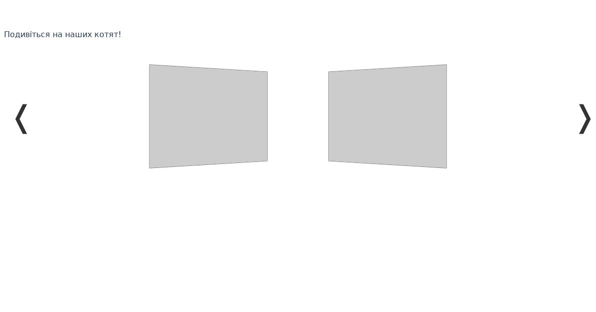 codesandbox io/api/v1/sandboxes/4jvnmz2n27/screens