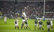 Scam Rugby World Cup 2015 ticket site shut down