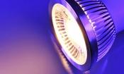 Halogen spotlights banned from September