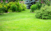Is Gtech's cordless Falcon lawn mower worth buying?