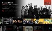 Netflix hits 100m subscriber milestone