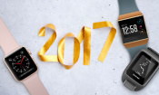 Wearables in 2017: the year in review