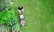 Most popular lawn mowers revealed by Which?