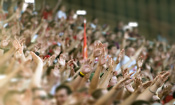 Don't miss the World Cup action by taking a risk on a second-hand ticket