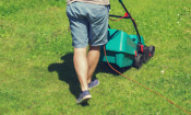 Cheap electric lawn mowers reviewed by Which?