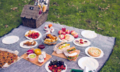 Best food processors for quick and easy summer snacks