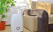 Are cheap dehumidifiers worth buying?