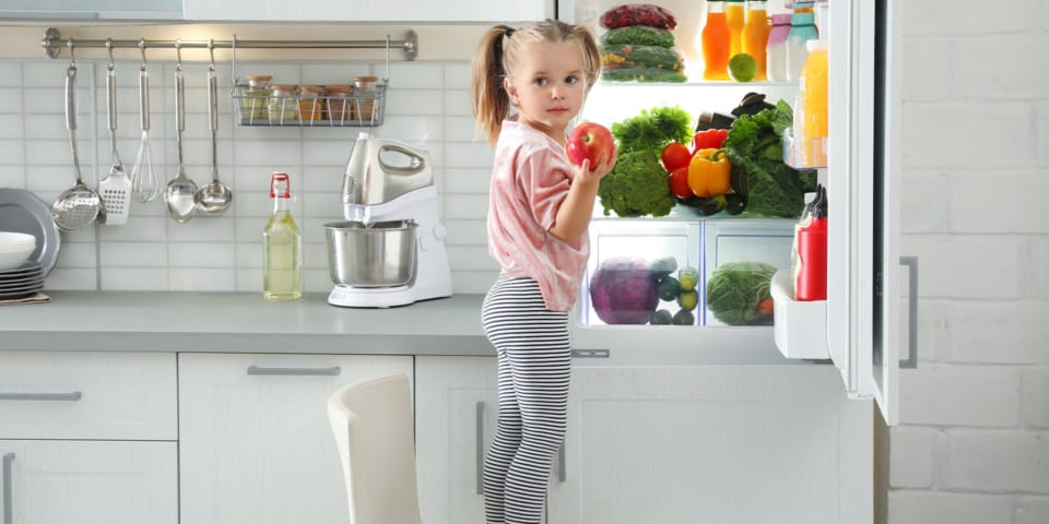 Appliance meltdown: can your fridge freezer cope with the summer heatwave?