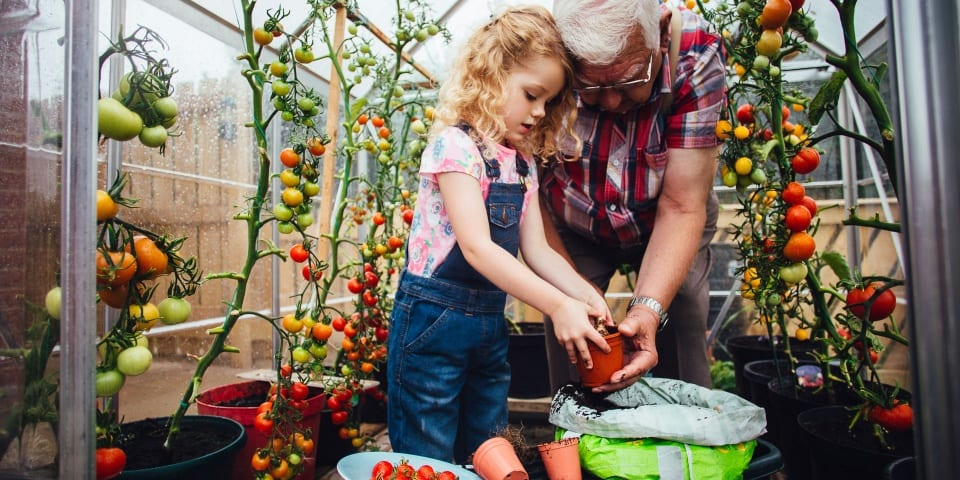 The top five veg and how to grow them