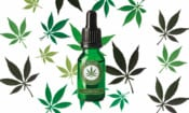 CBD oil: why it's hard to know what you're getting