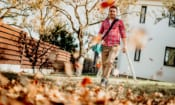 Cordless leaf blowers: what's the trade-off?