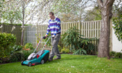 Get your lawn looking good