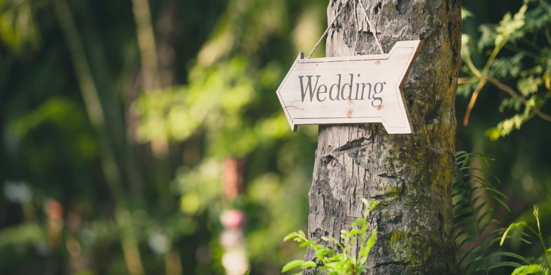 Outdoor weddings to be allowed in England and Wales from July