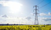 Cheapest energy deals for June 2020: why is no one switching at the moment?