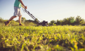 The most popular gardening products on which.co.uk