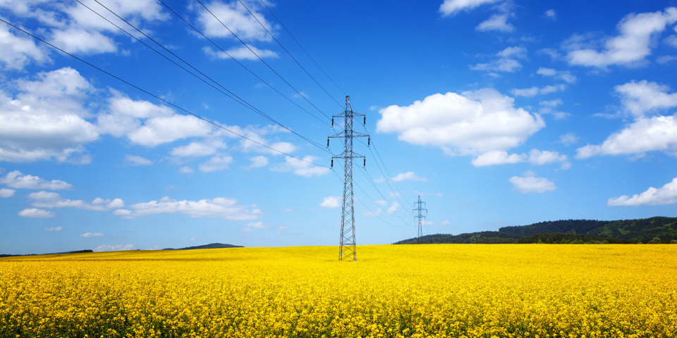 Top five energy deals for August: how will the new energy price cap affect you?
