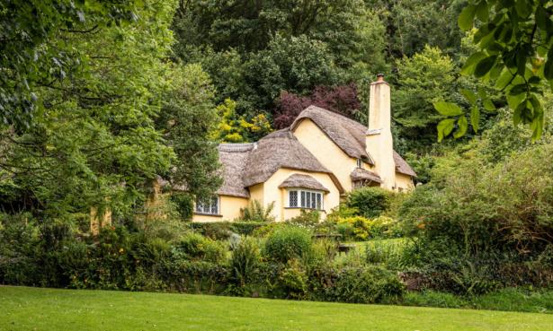 cottage in woodland UK