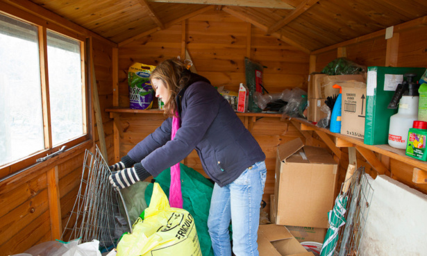 Tidying the shed