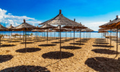 Package holidays: the holiday companies and travel agents with the best flexible policies