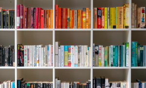 colour coordinated bookshelf