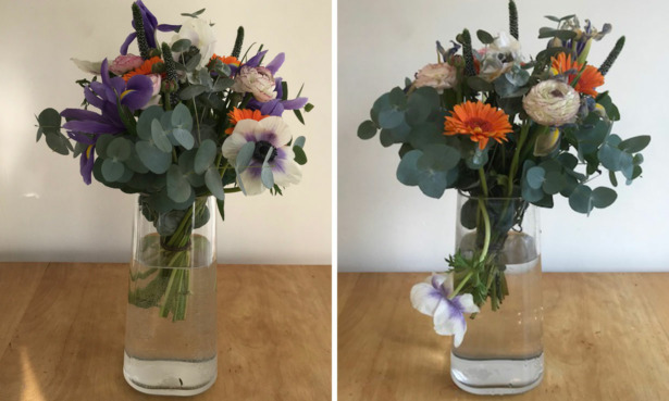 Interflora bouquet on arrival and after a seven days.