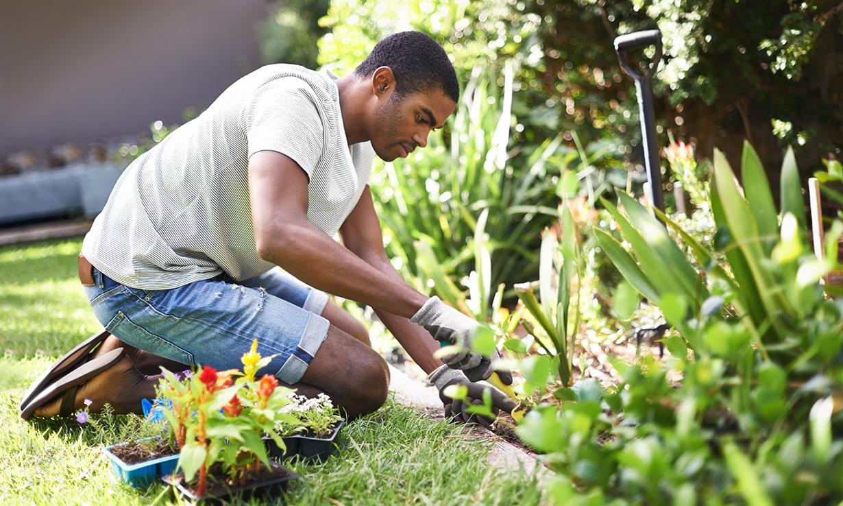 Man planting flowers in a garden