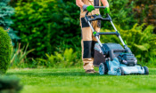 Should you buy a cordless lawn mower?
