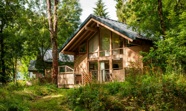 Forest Holidays lodge in Deerpark