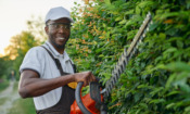 Top tips for trimming your hedge