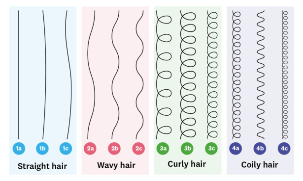 Chart showing the different hair types from type 1 to type 4