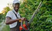 Which? tests new hedge trimmers to see which you should buy this summer