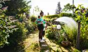 Nine free ways to freshen up your garden