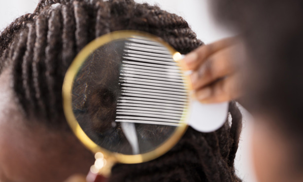 Child with afro hair being checked for head lice