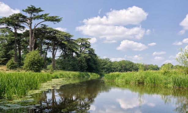 Attingham park lake