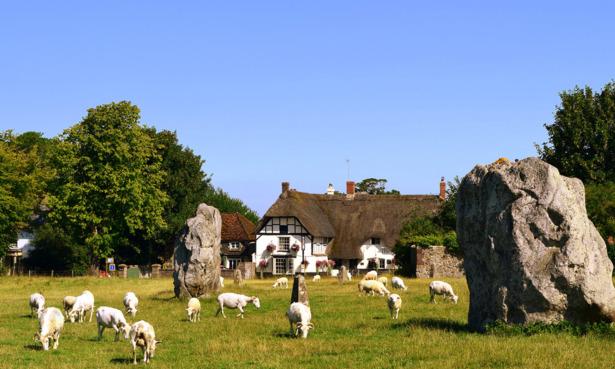 sheep and stone circle in Avebury