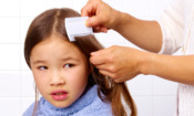 Head lice and nits: did lockdown reduce cases in the past year?