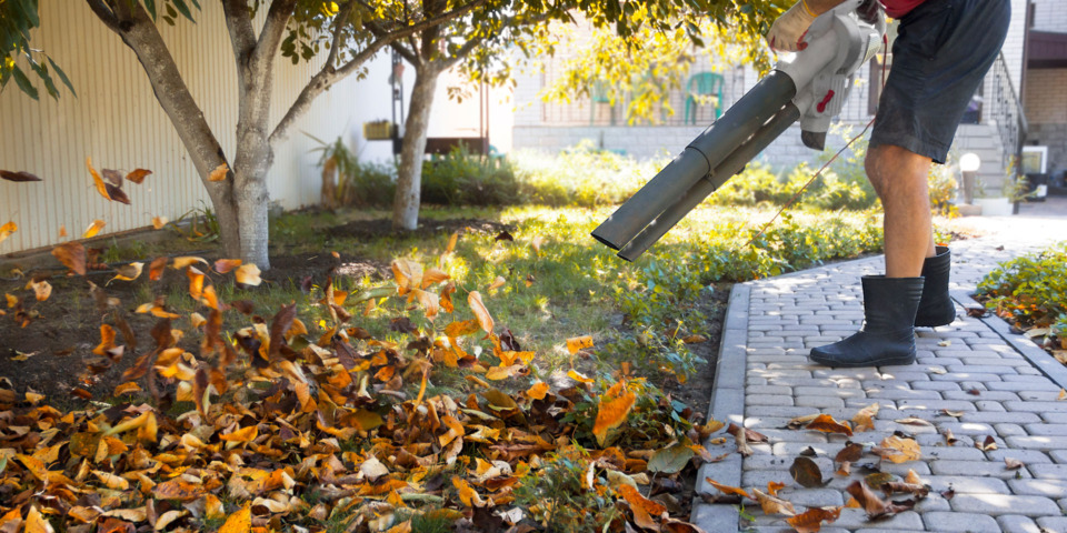 Lidl has cheap leaf blowers on sale, but are they worth buying?