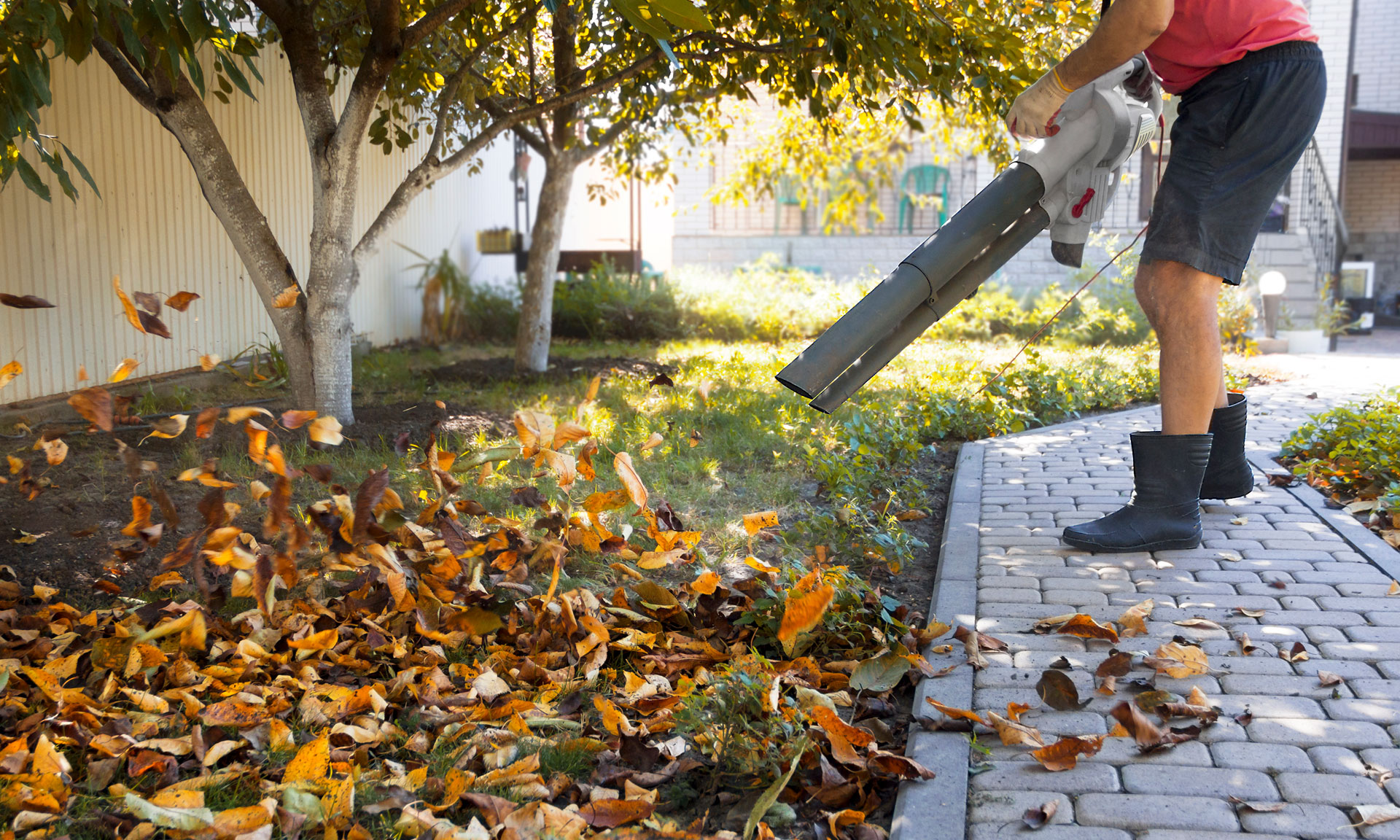 Lidl's has cheap leaf blowers on sale, but are they worth buying? – Which? News