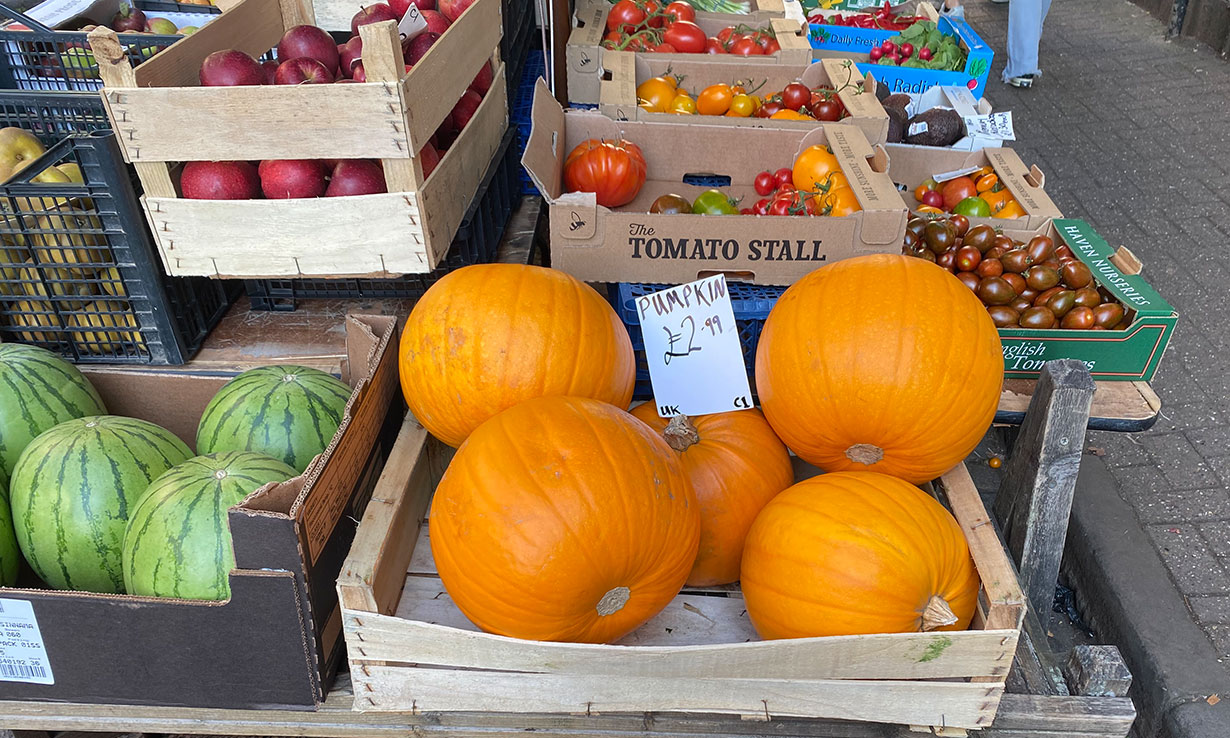 Where can you buy a pumpkin this year?