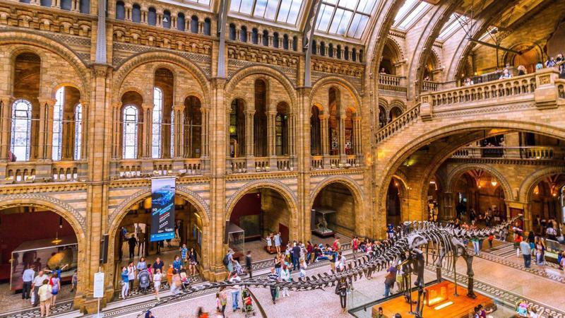 Mузей естествознания в Лондоне