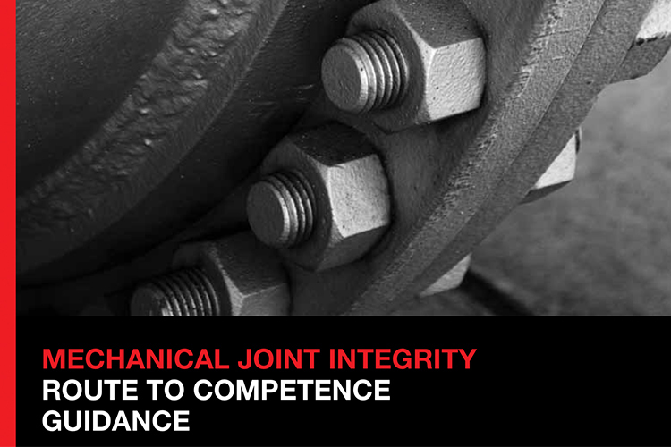 Mechanical Joint Integrity:  Competence Guidance