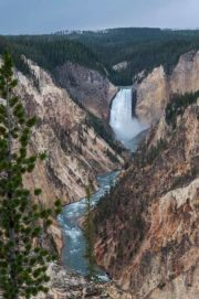 lower falls yellowstone park